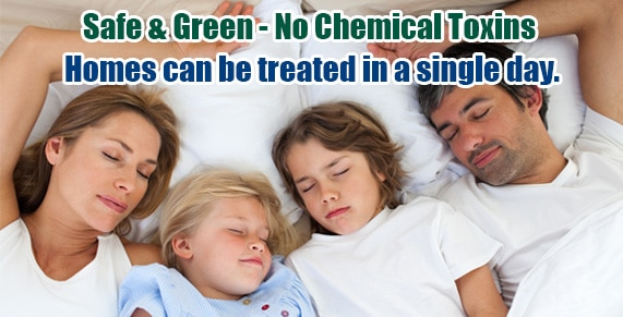Chemical Free NJ Bed Bug Treatment , Chemical Free Bed Bug Treatment New Jersey , Chemical Free Bed Bug Treatment NJ , Get Rid of Bed Bugs New Jersey , Get Rid of Bed Bugs NJ , Bed Bug Spray New Jersey , Bed Bug Spray NJ ,