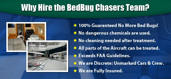 1 New Jersey Private Jet Aircraft Bed Bug Treatment