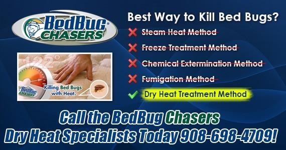 Bed Bug Dog New Jersey , Bed Bug Dog NJ , Bed Bug Exterminator New Jersey , Bed Bug Exterminator NJ , Bed Bug Images New Jersey , Bed Bug Images NJ ,